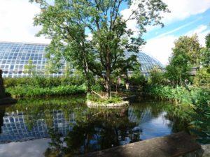Serre tropicale du parc zoologique de Paris