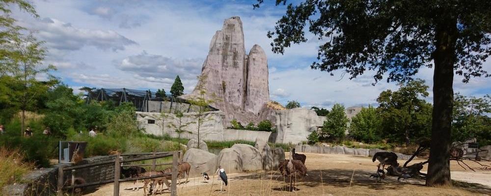 Le rocher du parc zoologique de paris - zoo de vincennes