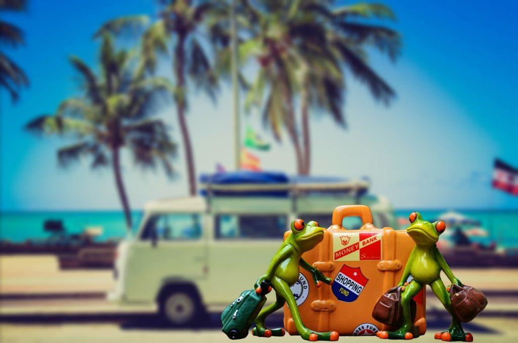 départ en vacances, mer, palmiers et plage