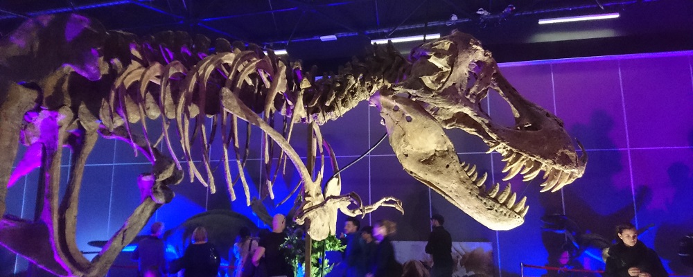 l'univers des dinosaures mandelieu-la-napoule