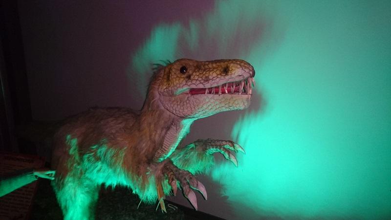 deinonychus univers des dinosaures
