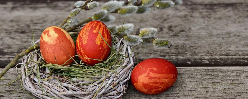 œufs de pâques dans un panier